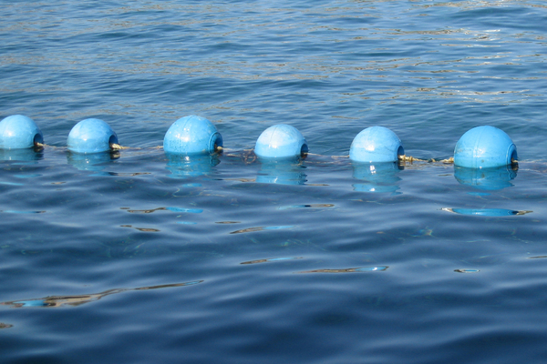 Blue buoys 1