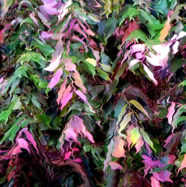colorful foliage vibrations: abstract colourful leaves - foliage vibrating wavy image