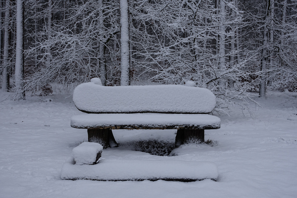snowy wooden bench