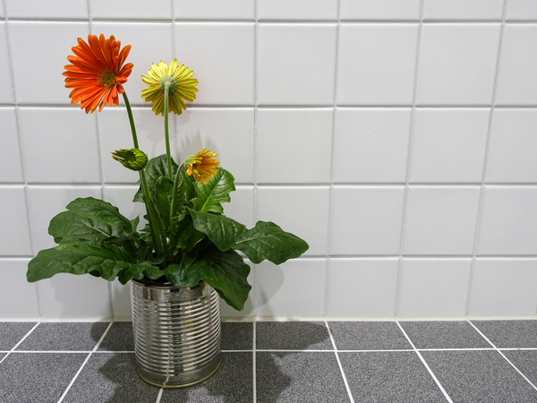 a tin full of gerbera