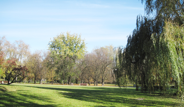 Park: A park in Warsaw. Morskie Oko area.