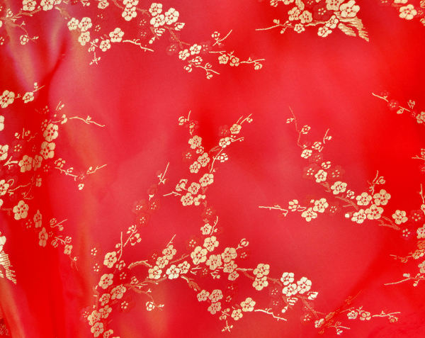 embroidered Chinese silk1