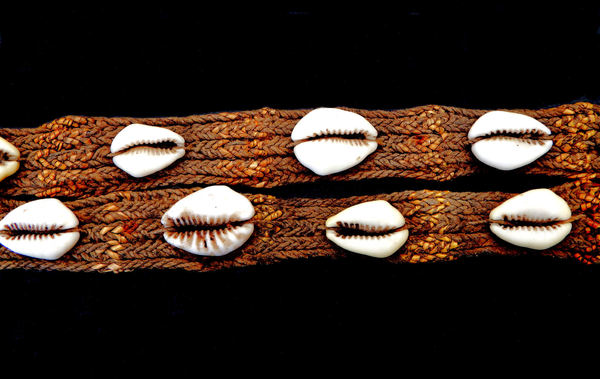 1950s New Guinea money belt3: Cowrie money belt from the Dani people in the former Dutch New Guinea