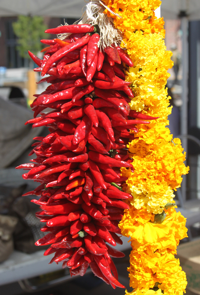 Chillies & Garland