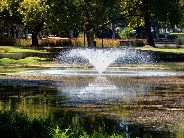 shady park fountains1