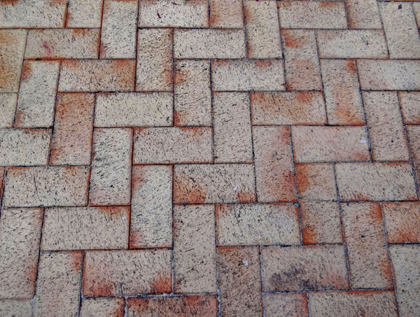 paving patterns2: pavement area with patterned surfaces