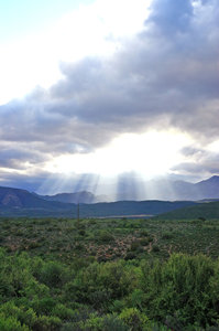 Rays on the Gamkaberg 1: Rays of sun breaking through the clouds on the foothills of the Gamkaberg, near Calitzdorp, Karoo, South Africa.NB: Credit to read