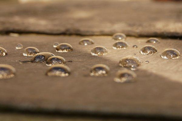 After rain: drops of water on wooden surface