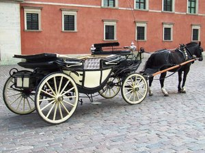 horse and carriage: horse and carriage in Warsaw