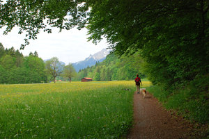 walking in bavaria: walking in bavaria
