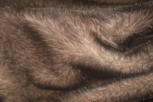 Fur: no description