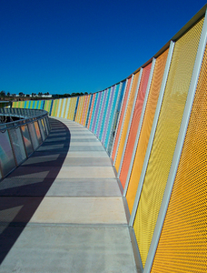 Brickpit ring walk 2: We visited Sydney Olympic park and discovered that they had opened up a new walk. The Ring Walk is an elevated circular walkway that allows visitors to access and view the Brickpit from above while preserving the habitat of the endangered Green and Golden