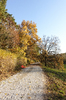 late autumn walkway: late autumn walkway