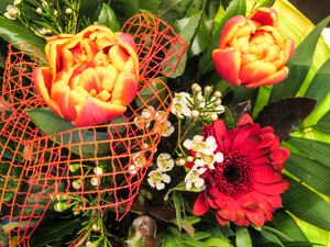 colourful bunch of flowers 2: colourful bunch of flowers 2