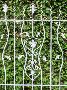 wrought-iron fence: wrought-iron fence