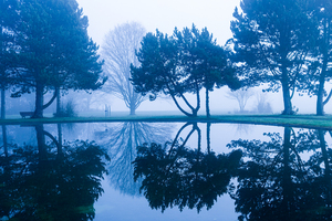 fog and lake reflections: fog and lake reflections
