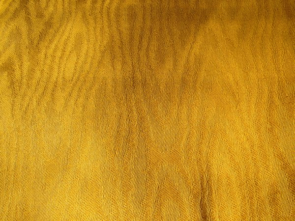 yellow damask texture: yellow damask texture