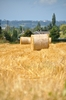Hay bales 5: Hay bales in the field. Normandy France