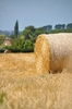 Hay bales  7: Hay bales in the field. Normandy France