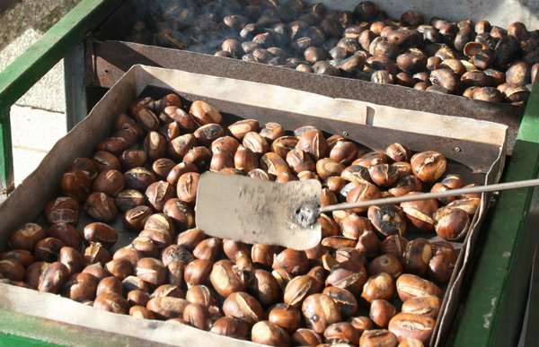 chestnut: roasted chestnut
