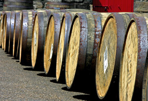 Scotch Barrels: A row of Jack Daniels barrels at the Glen Morangie Distillery, Tain Scotland