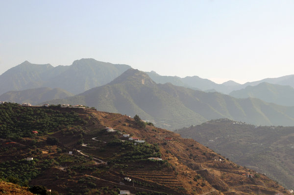 Haze in the mountains: Haze in the mountains. Avocado trees  and vineyards in the first place.