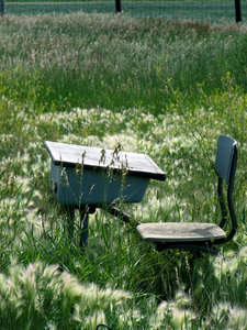 School's Out: I found this old school desk among the weeds at a garbage dump in the country.