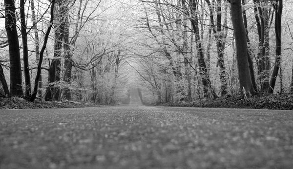 Long Road: Long Road monocrome