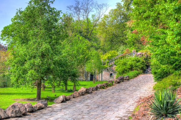 HDR of a path and trees: A high dynamic range painting alike picture of a path with trees and sky in the background