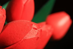 Wooden tulip: Macro shot of red, wooden tulips