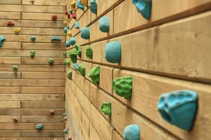Climbing wall: Grips on a wooden climbing wall