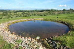 Artificial pond: A man made pond