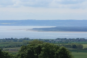 Field Vista: View of a farming landscape over a field, with Firth of Tay in the background