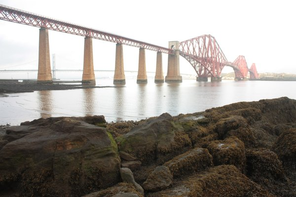 Forth Rail Bridge: View of the Forth Rail Bridge