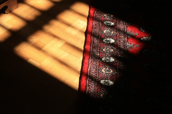 Sun and shadow on floor: Sun and shadow on wooden and carpeted floor