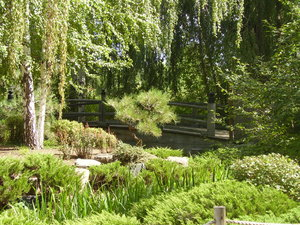 Denver's Asian Garden 1: The Asian (Japanese) garden section of the Denver Botanic Gardens. Late summer, 2007.