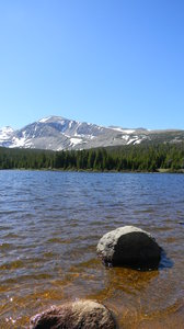 Arickaree Picnic Area: Some shots not far from the Arickaree Picnic Area, in the Brainard Lakes area, CO. June 17, 2010.