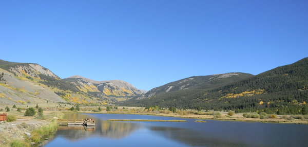 Colorado Color: The changing aspen leaves up past Leadville, not far from Red Cliff, CO. September 2010.