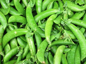 Green beans vegetables: Green beans vegetables