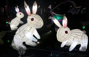 Rabbit lanterns: White Rabbit lanterns