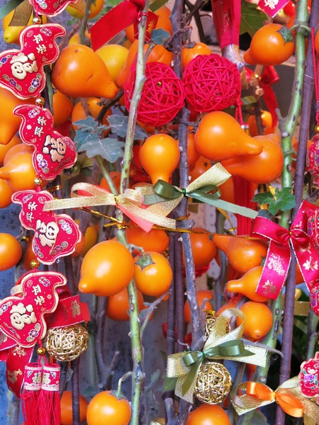 Chinese New Year Plants: Chinese New Year Plants