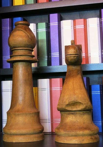 chess pieces and books: chess pieces and books