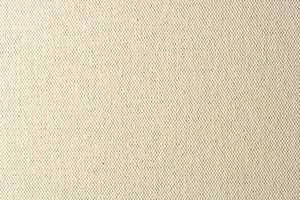 New White Canvas Texture: