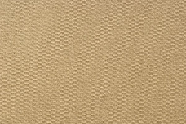 Tan Canvas Texture: A smooth grained artist's canvas.