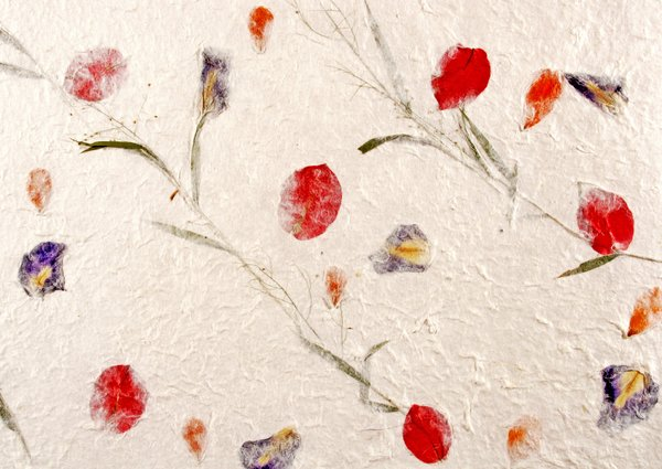 Handmade Paper with Flowers: Real flower pedals and leaves are imbedded between the silky layers of these handmade paper sheets.