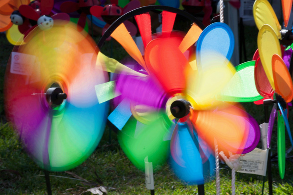 Colorful Windmill Toys: The many colors of fun as the wind spins the colorful toy windmill / wind wheels. Photo in parkland Tweed Heads NSW Australia.