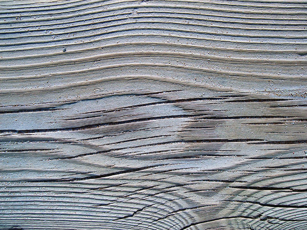 Sandy wood: Wood texture with sand of the beach. Playa de Xeraco, Valencia