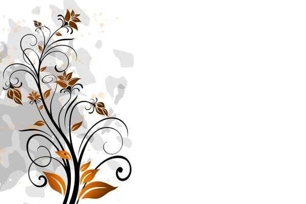 Yet Another Floral 5: Colorful floral elements on a white background. Which do you like most? ;)