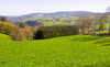 The Ardennes: Picture was taken in the Ardennes, Belgium.