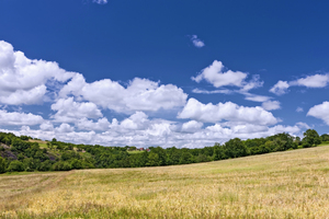 French landscape: Picture was taken during summer in the Dordogne, France.
